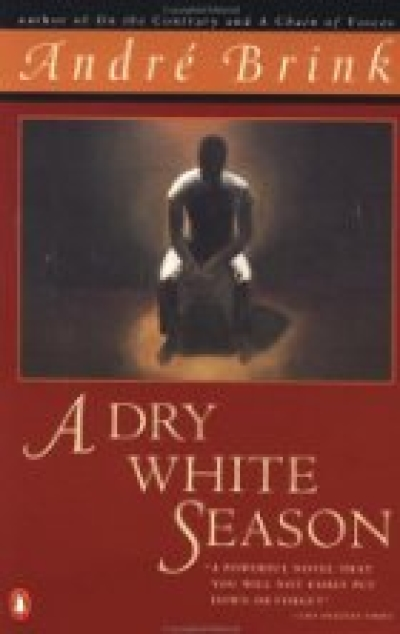 Boekcover A dry white season