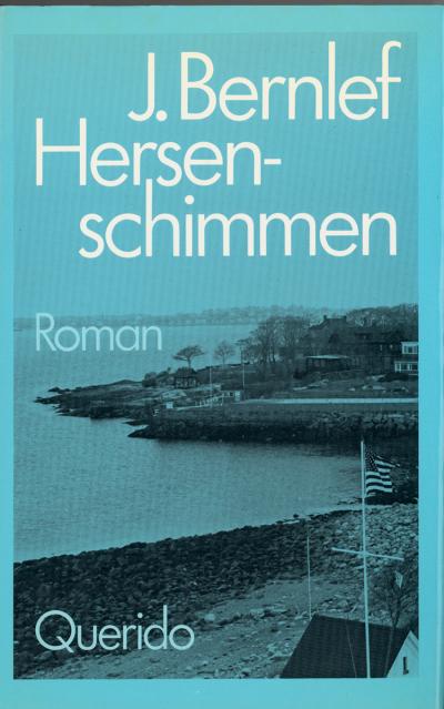 Boekcover Hersenschimmen