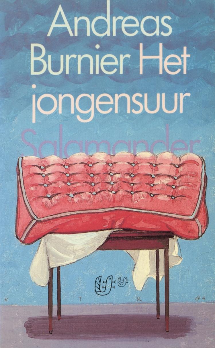 Boekcover Het jongensuur