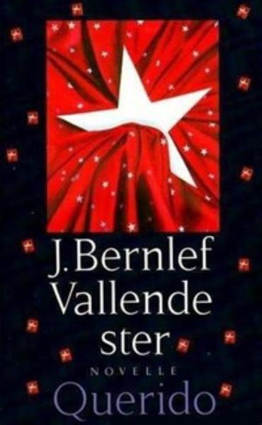 Boekcover Vallende ster