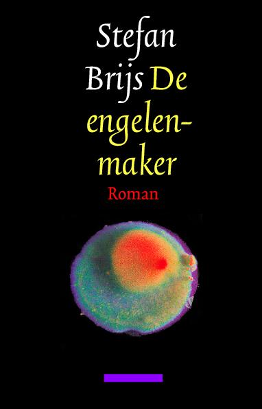Boekcover De Engelenmaker