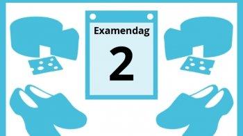 Donald Duck en Mickey Mouse in havo-examen Nederlands