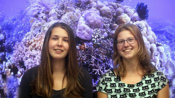 Wat jij kunt doen om het koraal te redden