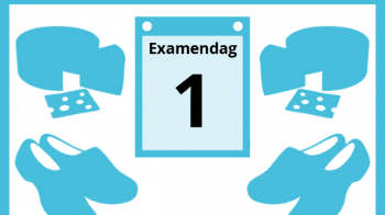 Vwo-examen Nederlands was 'verrassend'
