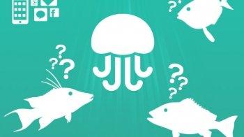 App: vraag het aan Jelly