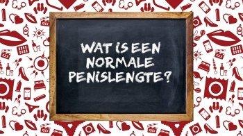 Wat is een normale penislengte?