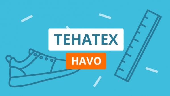 Lang havo-examen Tehatex met bijzonder weinig renaissance