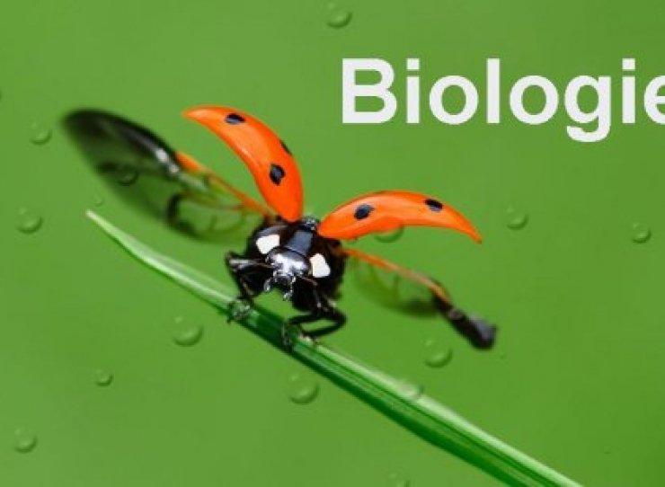 how to make media biology